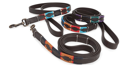 Dog Leads & Collars