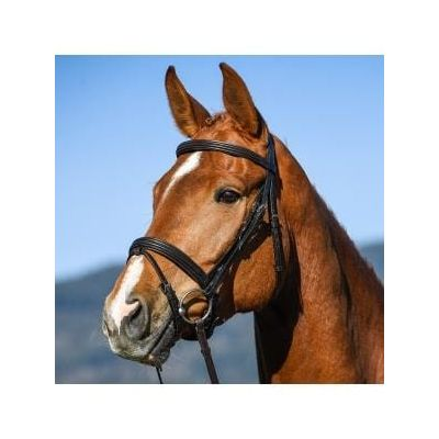Amerigo Vespucci Dressage (Snaffle) Flash Bridle with Reins