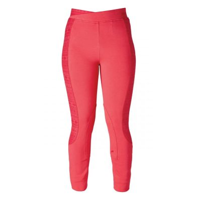 Harry Hall Ladies Lelley Jodhpurs